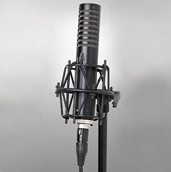 royer labs ribbon microphone