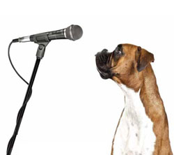 A boxer giving an information speech.