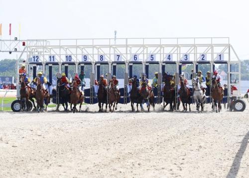 Vietnam's Dai Nam Racecourse Equipped With Harman - ProSoundWeb